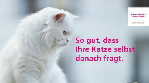"""Aktionskampagne """"Jetzt und alle"""""""
