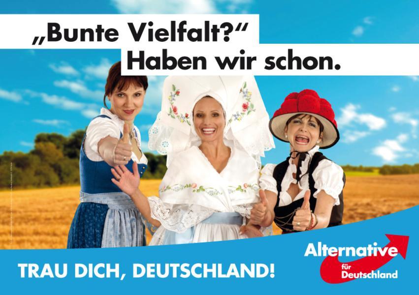 Wahlplakate Afd Bundestagswahl 2021
