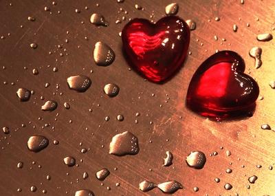 Branche: Valentinstag ist Quatsch