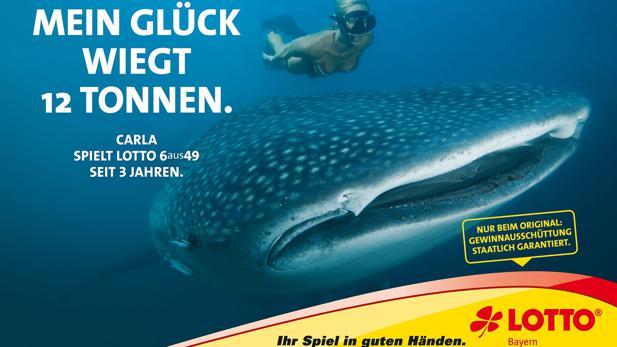 Lotto-Bayern Login