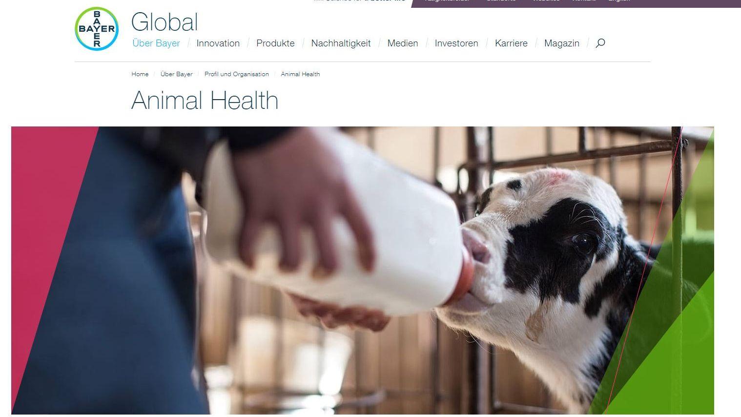 Weltweiter Etat: Proximity Worldwide gewinnt Bayer Companion Animal Health