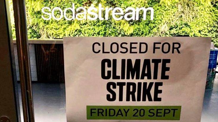 Fridays for Future: So beteiligen sich Agenturen, Marken und Medien am weltweiten Klimastreik