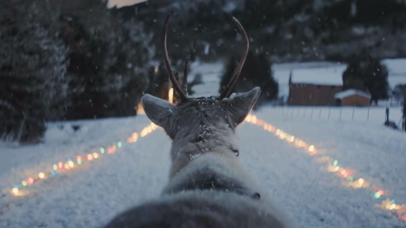 Lost Reindeer: Der wahrscheinlich beste Weihnachtsspot des Jahres kommt aus Kanada