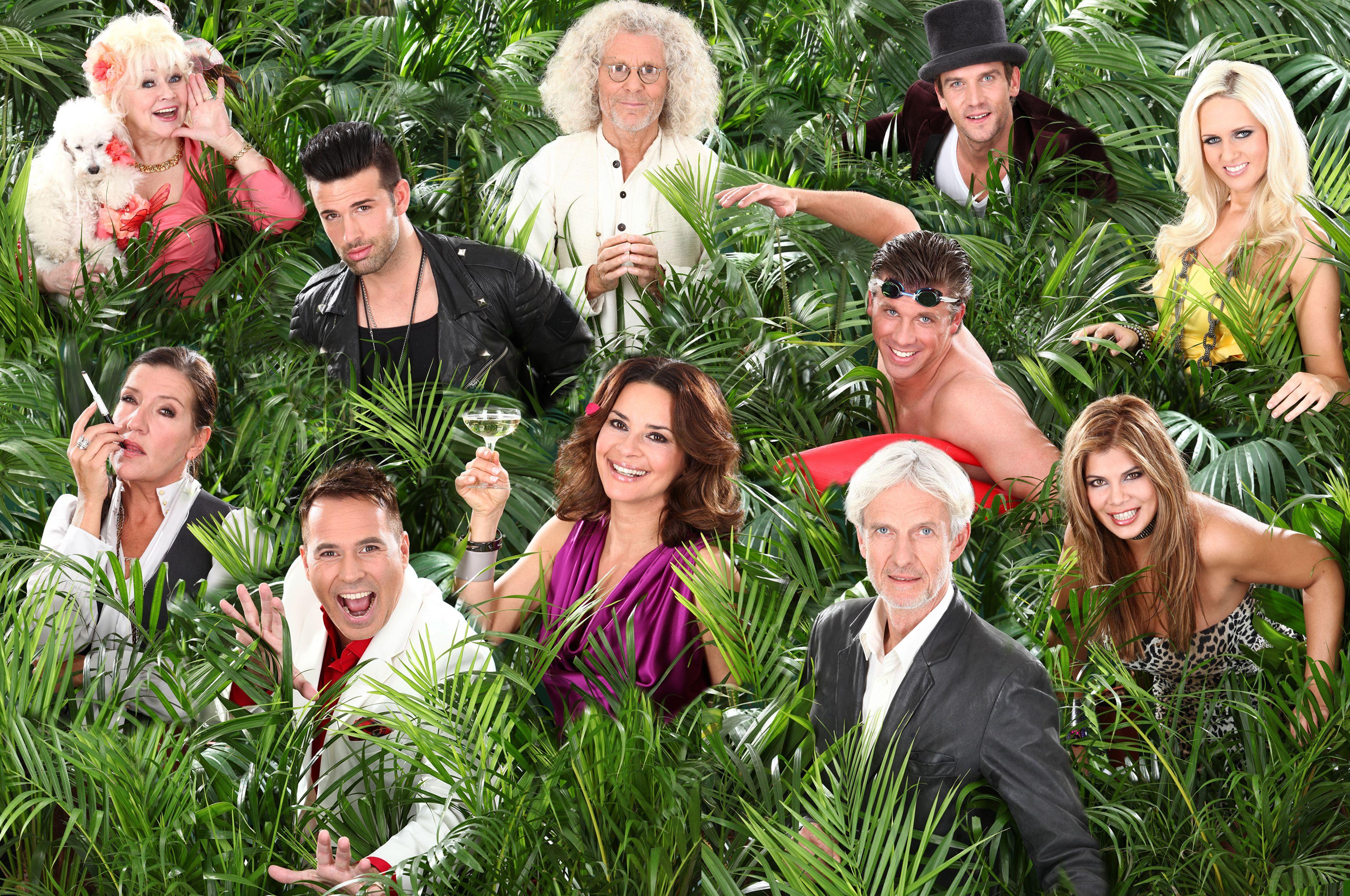 Dschungelcamp 6 Millionen Zuschauer Erfreuen Sich Am Leid