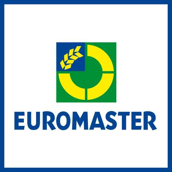 euromaster launcht funkkampagne f r winterreifen aktion. Black Bedroom Furniture Sets. Home Design Ideas