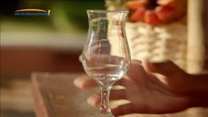 Kampagne: Ab in den Urlaub TV-Spot 2017