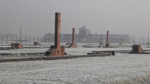 Kampagne: Inside Auschwitz