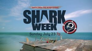 Kampagne: Shark Week: It's Still a Bad Week to be a Seal!