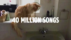 Kampagne: Amazon Music Unlimited presents Rearranging the Bathroom
