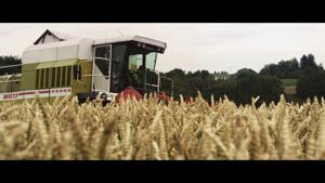 Kampagne: Škoda: Vorfahrt für den neuen Karoq