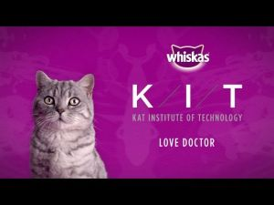 Kampagne: Ageing Fabulously for Cats - Whiskas K.I.T.