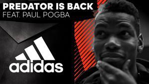 Kampagne: Adidas - Predator Is Back