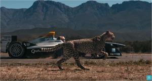 Kampagne: Drag Race: Formula E Car vs. Cheetah