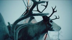 Kampagne: Esso - The Reindeer Princess