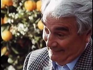 Kampagne: Rolf H. Dittmeyer - Valensina (1991)