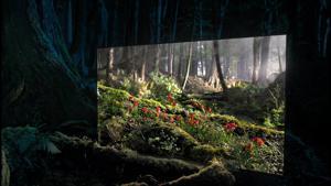 "Kampagne: SONY - BRAVIA OLED TV - ""Window into daytime"" advert"